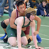 Cardigan Hosts Wrestling Tournament