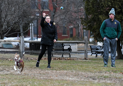 010216  Wesley Bunnell | Staff  Owner Jessica Williard, shown left, plays a game of catch with her six month old shepard/lab mix Lady on Federal Hill Green on Monday afternoon along with Matthew Dutton.