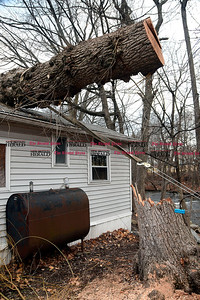 1/27/2017 Mike Orazzi | Staff A large tree on a home in Creekside Estate Mobile Home Park off Broad Street in Bristol Friday.