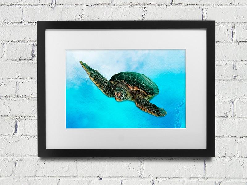"""Green Sea Turtle.""  Black Frame."