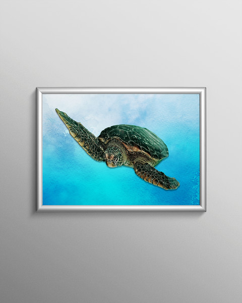 """""""Green Sea Turtle."""" Poster Frame."""