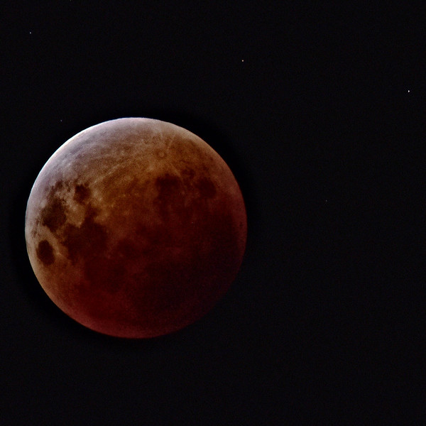 """""""Lunar Eclipse, Townsville, January 31st, 2018 - A few minutes before totality.""""  (Nikon D750, Tamron 150-600mm at 600mm)"""