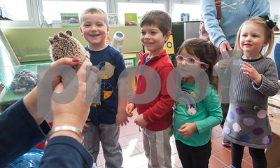 01/25/18  Wesley Bunnell | Staff  Children were able to get an up close look at animals at Imagine Nation in Bristol on Thursday afternoon.  During the 1:30pm show run by Karen Pac Joey Beauchemin, age 5, Manny Moreiras, age 4, Anabella Moreiras, age 2, and Alayna Ljubuncic, age 3, all smile as Karen Pac holds Pinwheel.
