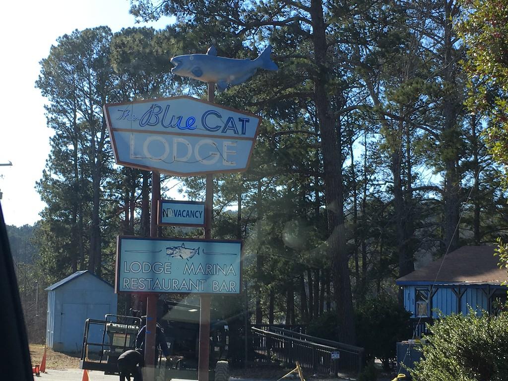 The Blue Cat Lodge