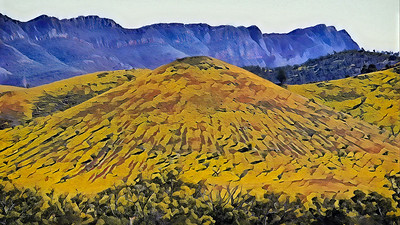 """Arkaba Hills, Elder Range, Flinders Ranges, SA."""