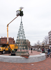 01/16/19  Wesley Bunnell | Staff  City workers taking down the Central Park Christmas Tree on Wednesday afternoon.
