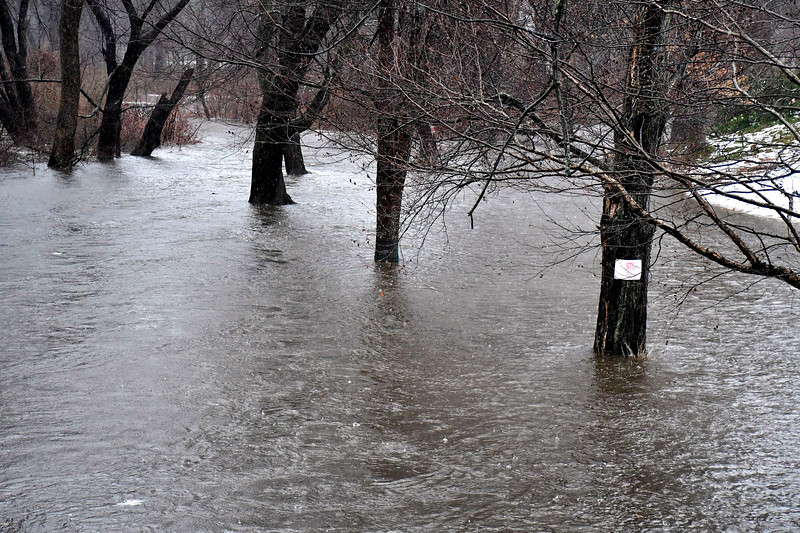 1/24/2019 Mike Orazzi | Staff Copper Mine Brook as seen from the Artisan Street bride in Bristol during Thursday's heavy rainfall.