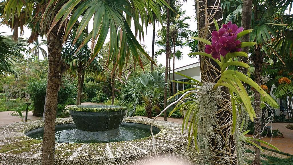 Miami Beach Botanical Garden, Miami