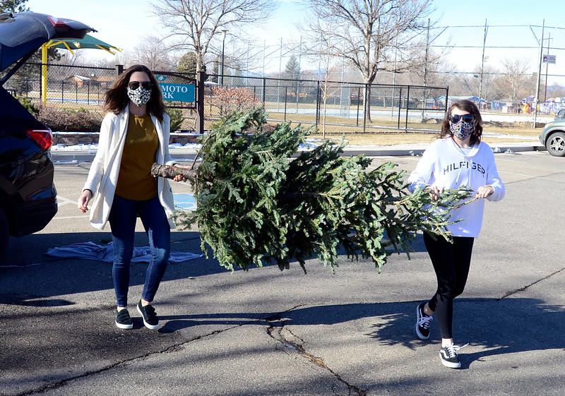 Christmas Tree Disposal in Longmont