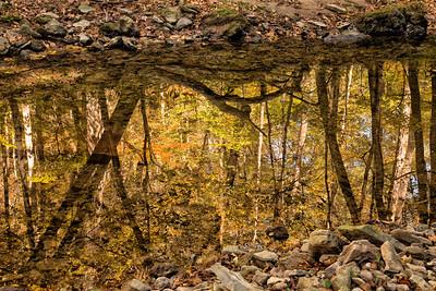05,DA054,DC, Fall Reflections
