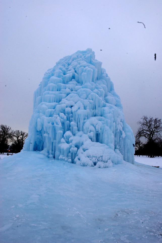 1/26/09 Belle Isle Ice Tree