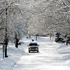 THB photo/John P. Cleary<br /> With the snow clinging to all the tree branches it gives a tunnel effect looking south along south Pendleton Ave. in Pendleton