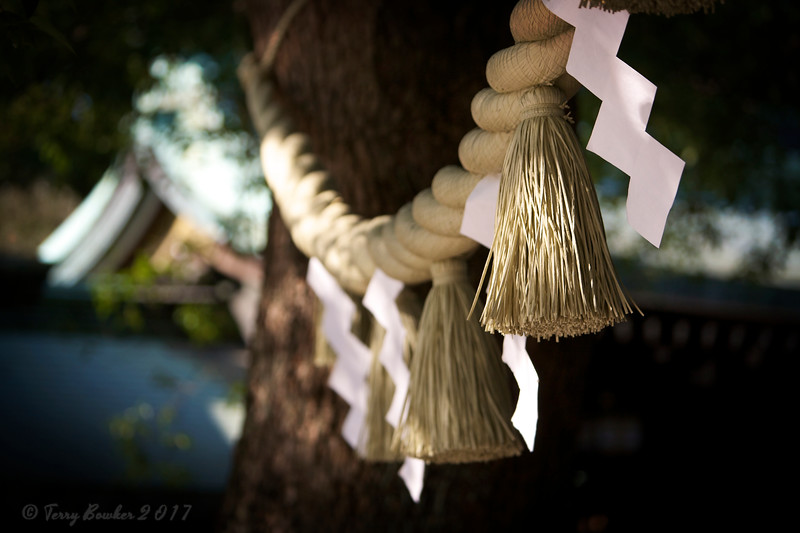 Meiji Jingu Shrine, Harajuku, Tokyo Japan<br /> Tassels, white paper lightening bolt symbol and twisted rice straw rope all demarcate the sacred space and the arrival of the new year.