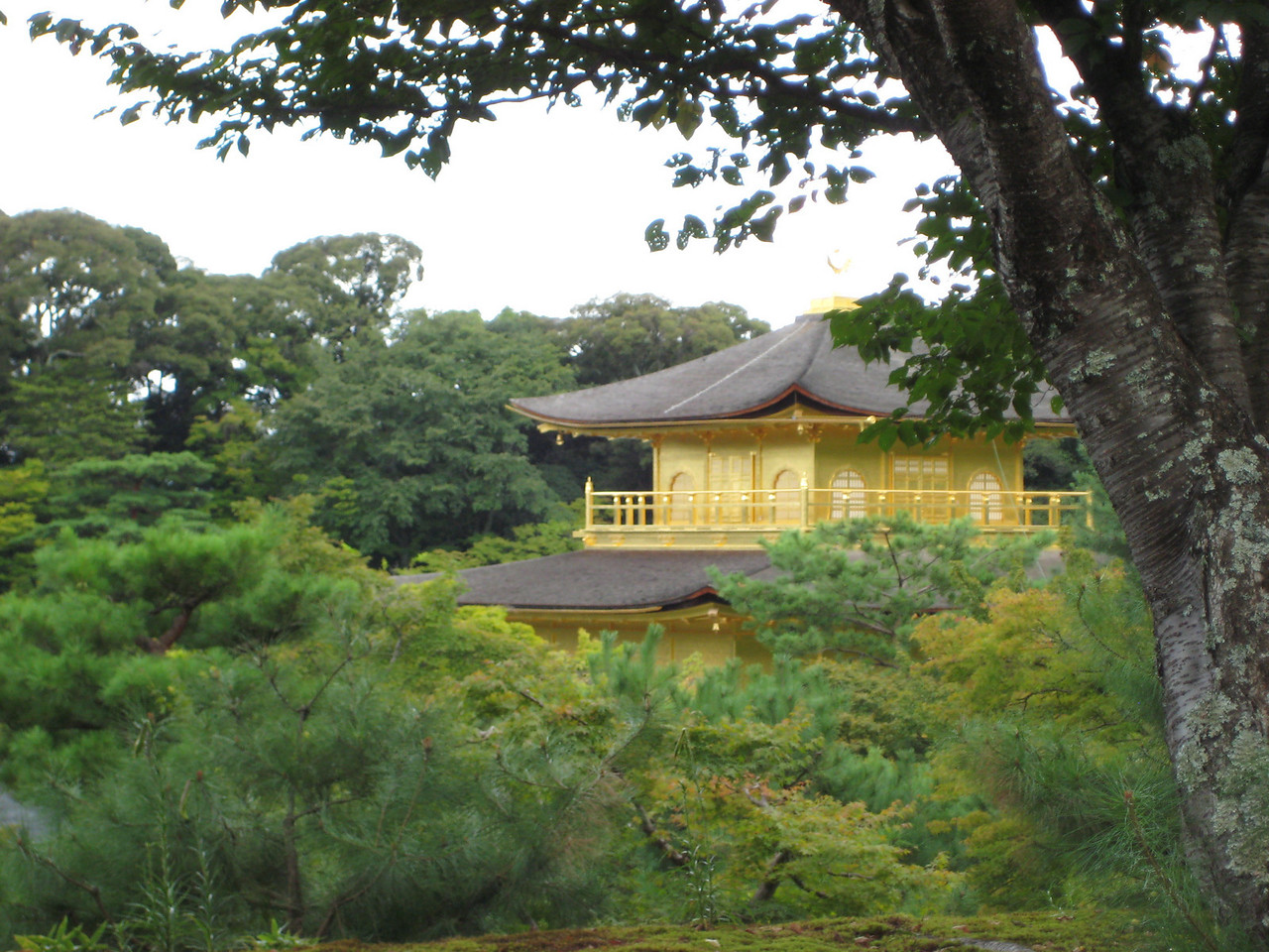 "The third floor of the Golden Pavilion is built in the style of a Zen temple and is known as the Kukkyôchô (""Superb Apex""). Inside is sheltered an Amida triad and 25 Bodhisattvas."
