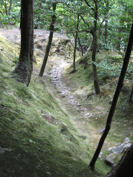 Off to the side of the path, a dried stream bed.