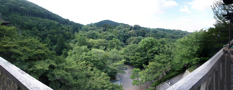 A panoramic view of the forest and mountains visible from Kiyomizu.