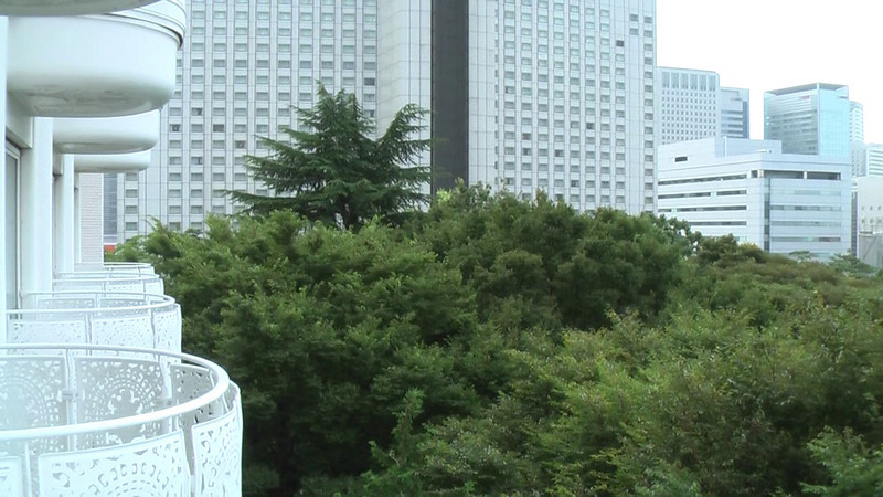 A brief video outside our hotel balcony where you can hear the unrelenting sounds of the cicada.