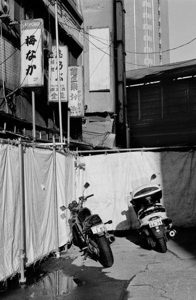 Tokyo, Yoyogi<br /> December 2008<br /> <br /> Tri-X 400, FM2