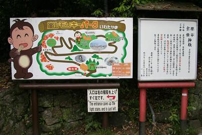 Japan 2011 (Monkeys)