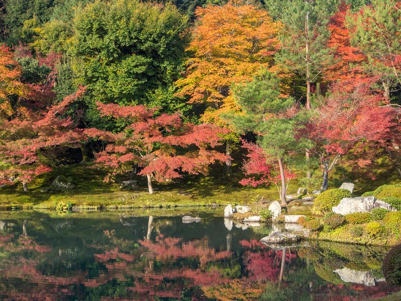 Koyo Kyoto