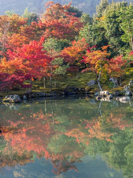 Koyo, Arashiyama, Kyoto