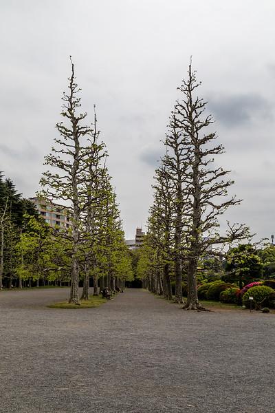 Japan - April 21-28, 2014