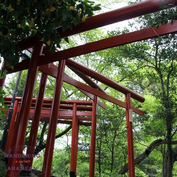 Torii gates at Tsurugaoka Hachiman-gū