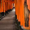 Fushimi Inari Shrine. 7