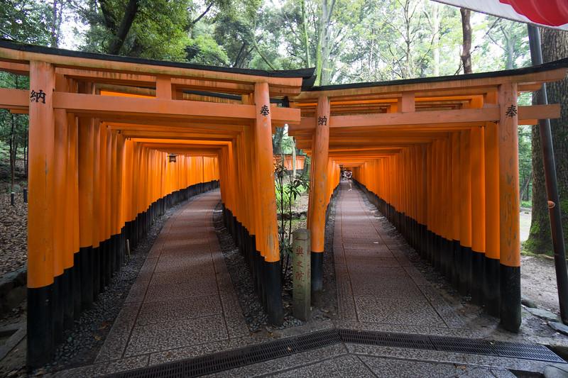 Fushimi Inari Shrine. Kyoyo. 1