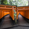 Fushimi Inari Shrine. Kyoyo. 1