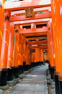Torii gates, Fushimi Inari-Taisha, Kyoto