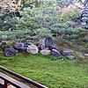 A garden at the Kennin-ji Temple complex where Eri took me for a morning meditation class with a monk, and to visit the area.