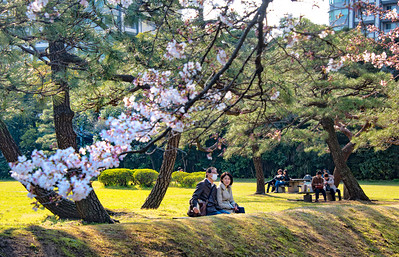 Couple in HamaRikyu Gardens-JAP_4491