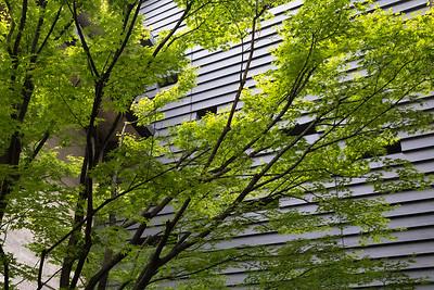 Courtyard, Ryukoku Museum