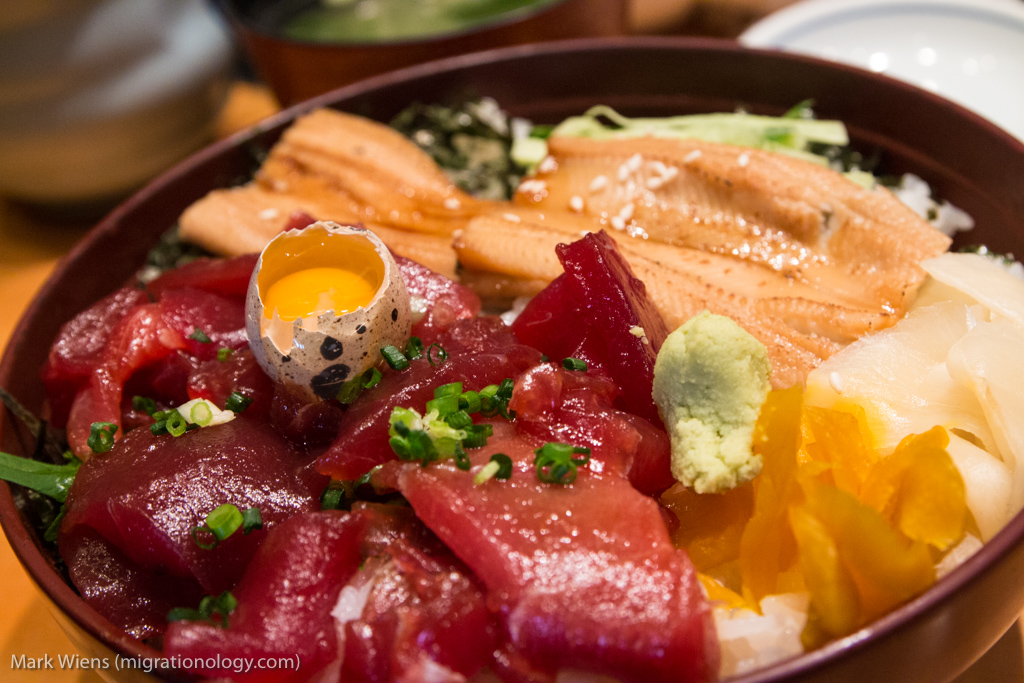 chirashi don tokyo japan X2 The Ultimate Tokyo Travel Guide for Food Lovers