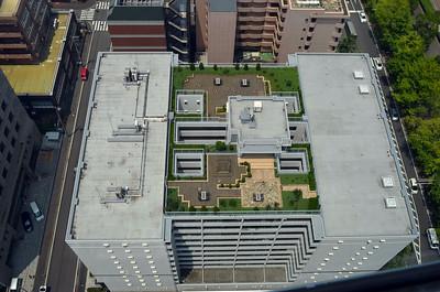 Roof Top Gardens of Japan