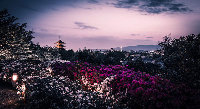 Spring. Kyoto. Twilight.