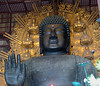 The Daibutsu Buddah is made of copper and bronze, weighs 250 tons and stands 30 meters tall