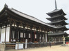 Kofukuji temple was founded in 669 and moved to Nara in 710. The current Tokondo Hall and the famous five storied pagoda date from the 15th century