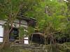 Small tea-house on the hillside
