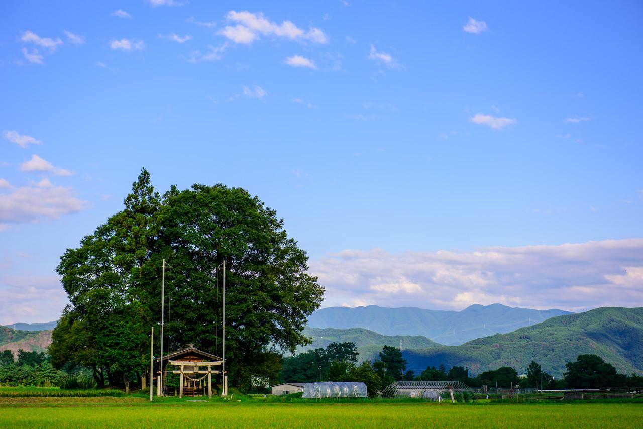 Shrine in Azumino