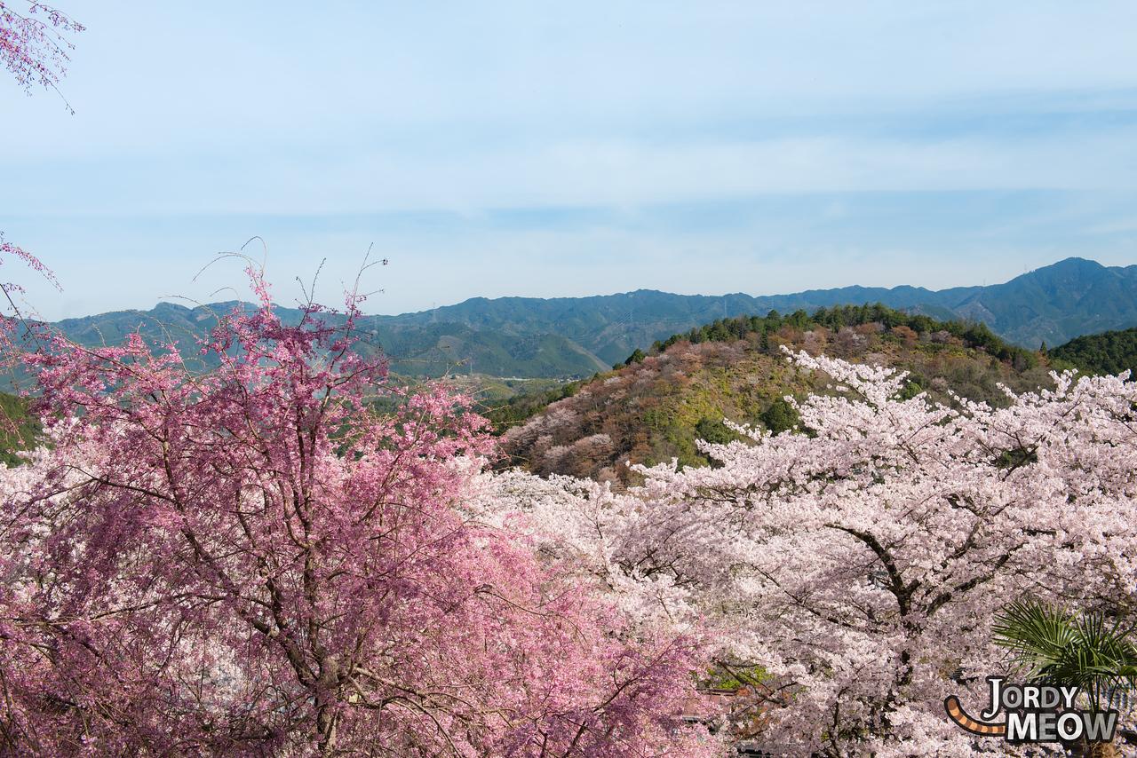 Yoshinoyama