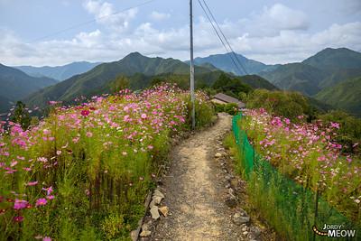 Hatenashi Toge Pass