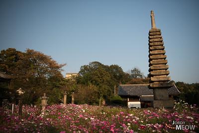 Hannya-ji Temple