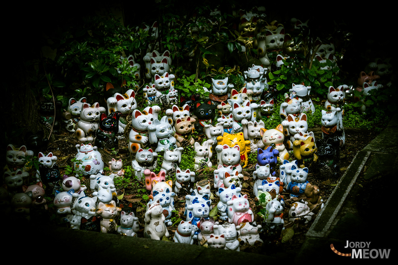 Dolls are crammed on to the altar of Awashima-jinja (Shrine), which is famous for the Shinto ritual of Hina-nagashi (floating Girl's Festival dolls on the sea of March 3rd). A fantasy world opens up before your eyes and you become caught up in the mysterious atmosphere.