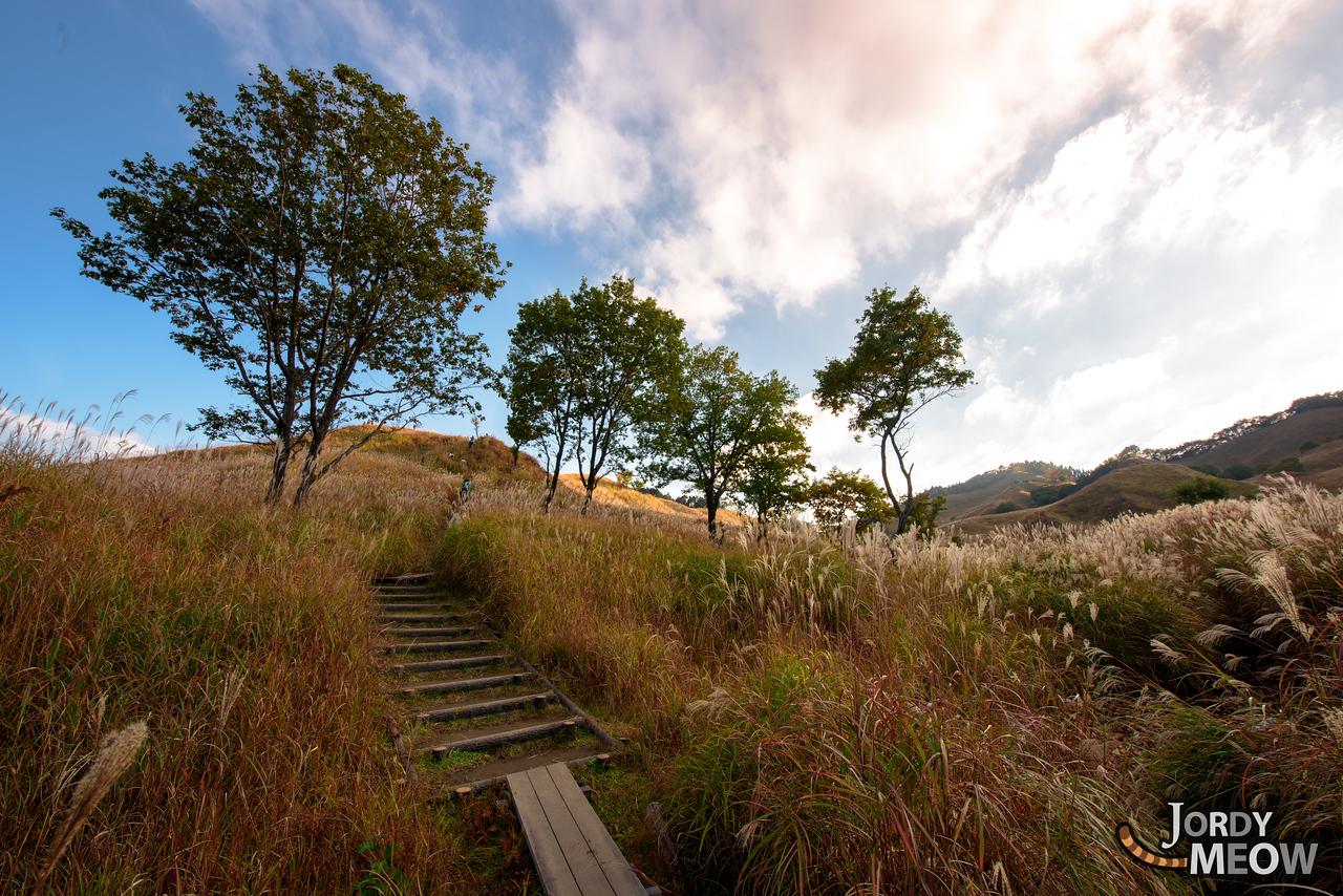 Tonomine Highlands