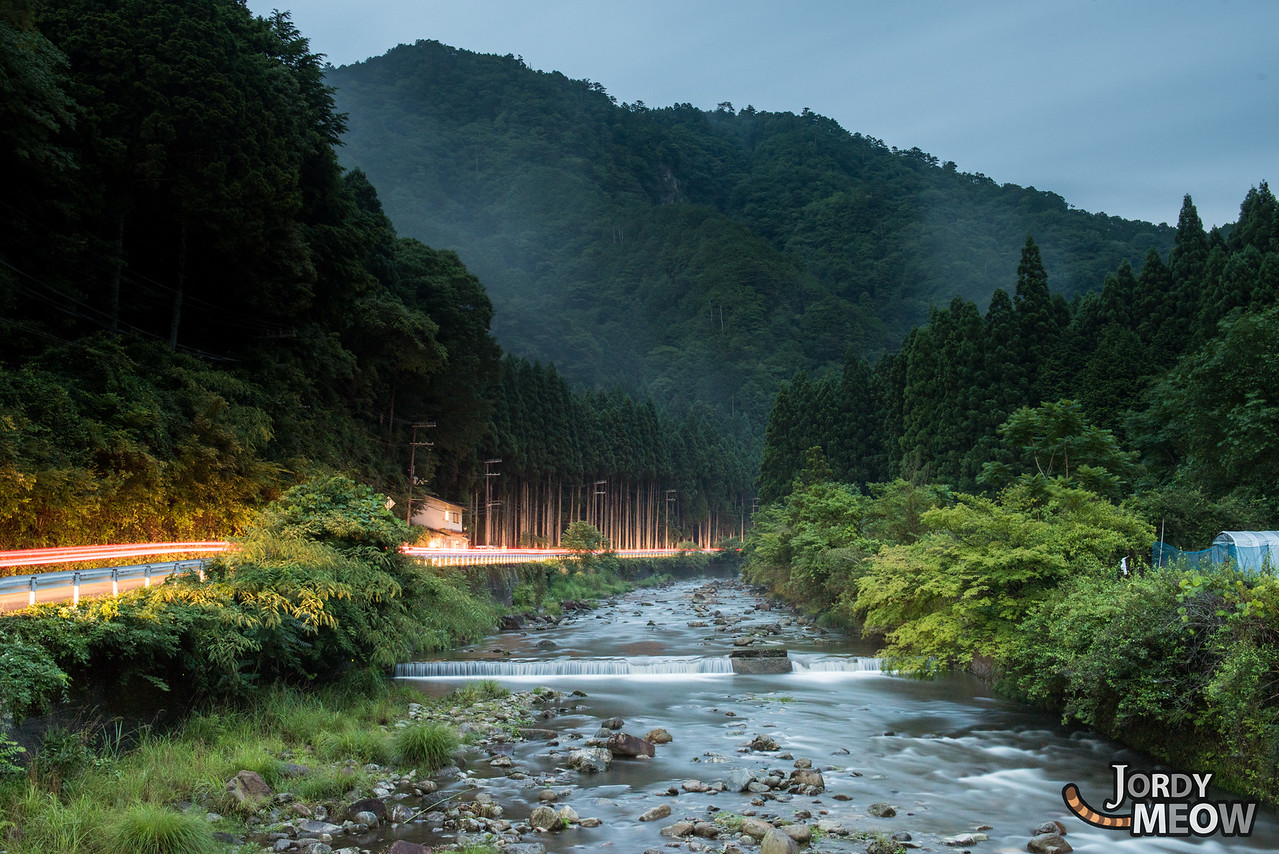 Fireflies in Nara