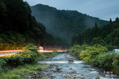 Fireflies in Nara