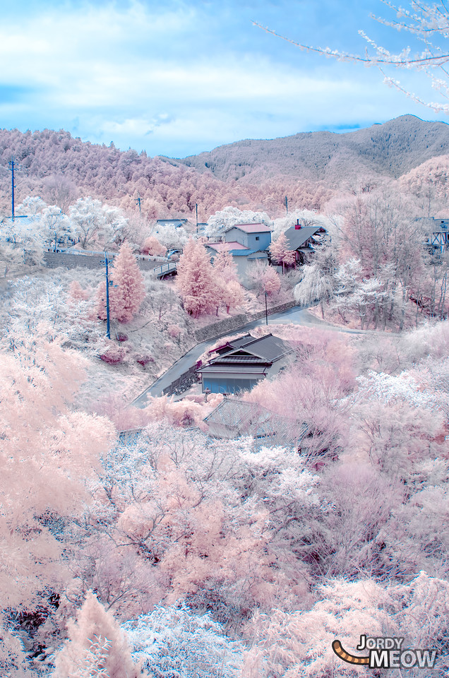 Yoshinoyama / Barbe à Nara