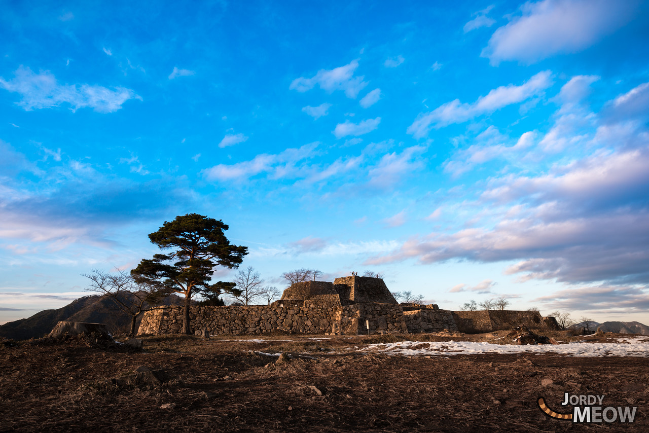 Takeda Castle